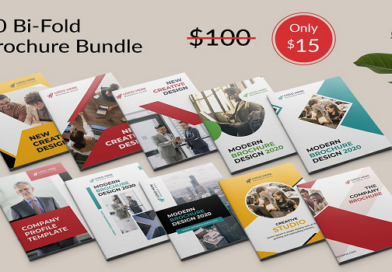 10 Corporate Bifold Brochure Bundles