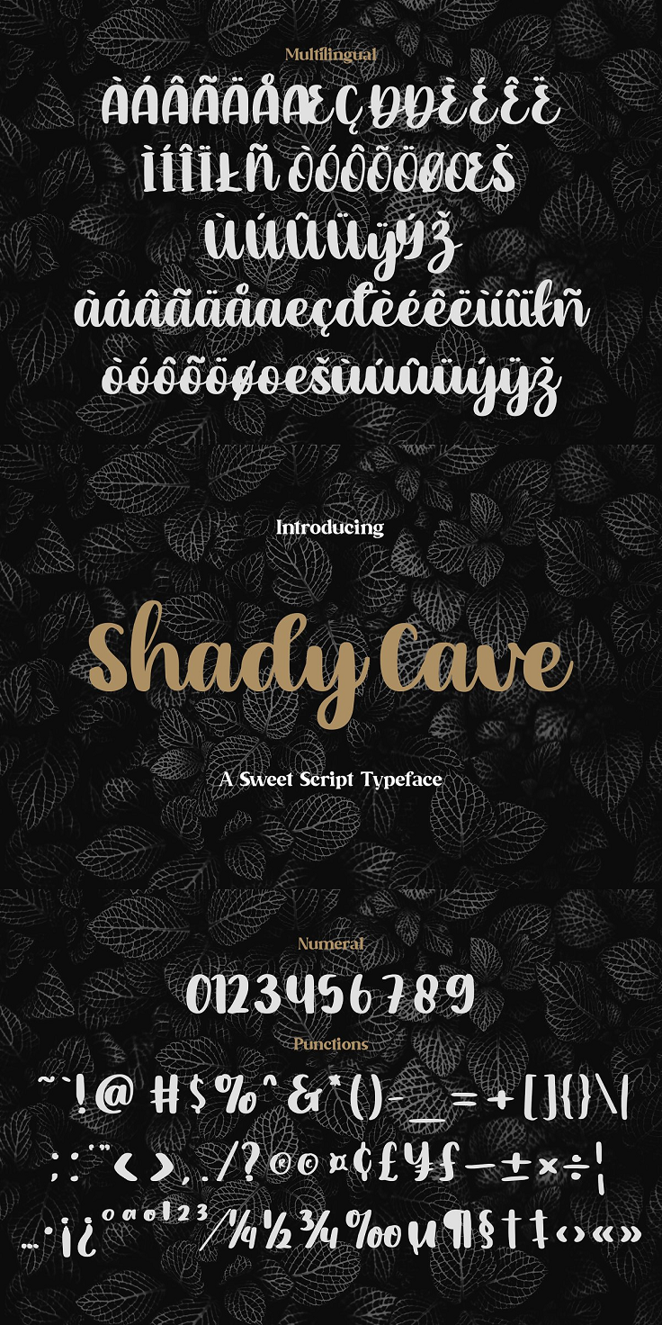 Shady Cave is a simple, elegant and relaxed handwritten font. Fall in love with its incredibly versatile style and use it to create beautiful designs! Highlight : 3 Fonts are provided in OTF, TTF & WOFF formats. Basic Latin A-Z and a-z Numbers Symbols Works on PC & Mac Simple installations Accessible in the Adobe Illustrator, Adobe Photoshop, Adobe InDesign, even work on Microsoft Word. PUA Encoded Characters – Fully accessible without additional design software. Whats included : Shady Cave OTF Shady Cave TTF Shady Cave WOFF
